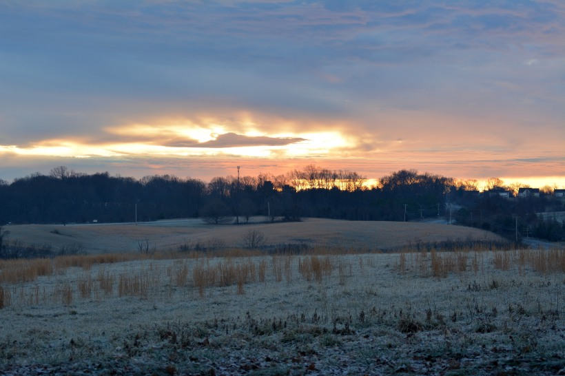 Sunrise over the Howard County Conservatory  Photo by Mike Hartley