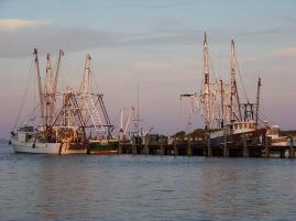 big fish rigs