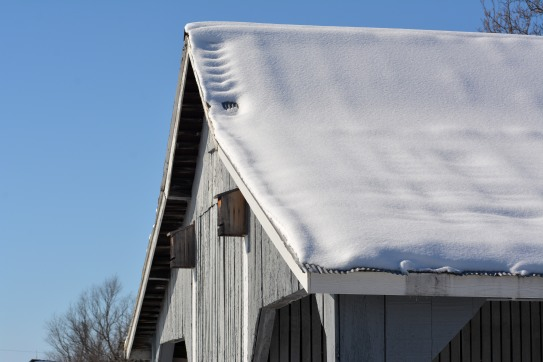 Snow melting on barn roof. Photo by Mike Hartley