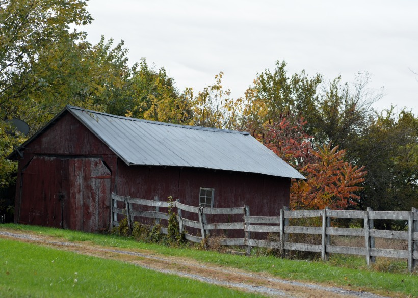 So many Barns, so little time. Photo by Mike Hartley
