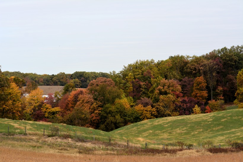 Rolling hills of Rt 99. Photo by Mike Hartley