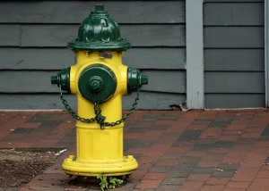 Hydrant in Annapolis Photo by Mike Hartley