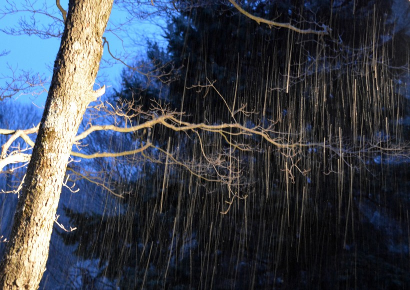 First flakes of the season. Photo by Mike Hartley