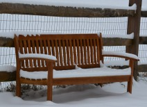 Chilly welcome bench. Photo by Mike Hartley